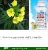Evening Primrose soft capsule