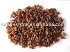 sun dried raisin