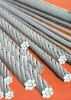 304,316 stainless steel 7x19 wire rope