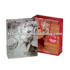 2012 New Luxury Shopping Paper Bag for Cloth(LXH-0102)