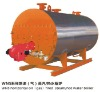 WNS Oil/Gas-fired steam Boiler