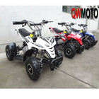 CE 49CC Mini ATV/Mini Quad Bike for Child (QW-MATV-01B)