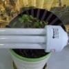 Stocked 3U energy saver 20W