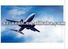 China Professional Air freight agent to DXB(Dubai)
