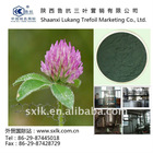 Isoflavones(HPLC 3%-40%)--Red Clover Extract