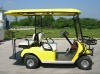 Customer electric golf cars