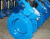 Double Flange Excentric Butterfly Valve