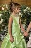 Latest new style Little Queen flower girl dresses FG0145