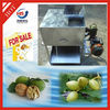 Hot selling good quality walnut green skin cleaning machine