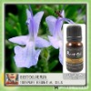 Food Products Rosemary Oil Natural Fresh Essential Oil