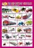 2012 new design PVC learning wall chart