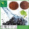 Anthocyanidins Bilberry Extract