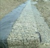 Gabions for road,military fortification,river bank(factory)