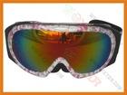 2012 snow goggles