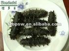 Scuffing salt sea cucumber