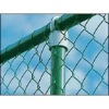 High Quality PVC-coated /Galvanized Chain Link Fence(Low price)