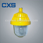 Explosion-proof Lighting