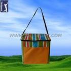 Hot Sales Function Foods Cooler Bag