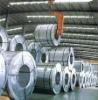 High Corrorison Resistance Gavanized Steel coil