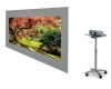 Eyelet rear projection screen