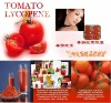 lycopene powder