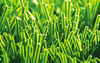 Good sale artificial grass in china