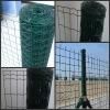 Plastic coated Dutch Fence