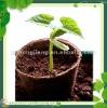 flower peat pots