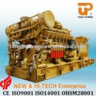 Factory Directly Sale! 1000kW Natural Gas Turbine Generator