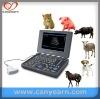 U610v/A10v Veterinary Ultrasound