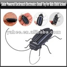 Solar Powered Cockroach Electronics Small Toy For Kids Child School, YGA430A