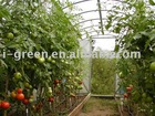 economical greenhouse