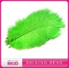 Fashion colorful ostrich feather for wedding decoration