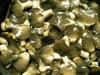 mushroom in brine