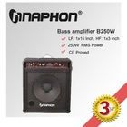 High Power 250W Professional Bass Amplifier B-250
