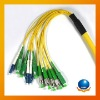 Indoor & Outdoor 12 core optical fiber cable