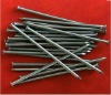 polished common iron nails(factory)