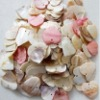 FREE SHIPPING!!Mother of Pearl Shell