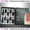 Professional soak off LED Gel polish kit