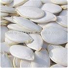 snow white pumkin seeds
