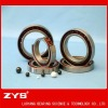 ceramic ball bearing(ZYS)