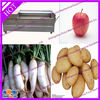 popular vegetable and fruit washing machine 008615890690051