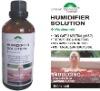 HIndulging aromatherapy oil humidifier Solution