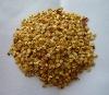 hot chili seeds
