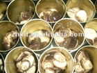 canned whole button mushroom(new lowest price)