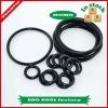 Flame resistant non-standard VITON encapsulated o-rings