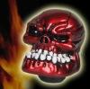 Custom Human Bone Skull Stick Shift Gear Shifter Knob - Car Truck Universal