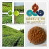 green tea extract use as Water-soluble beverages;