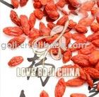 Chinese Dried Wolfberry/Goji Berry