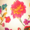 Woven Polyester Curtain Fabric Printing